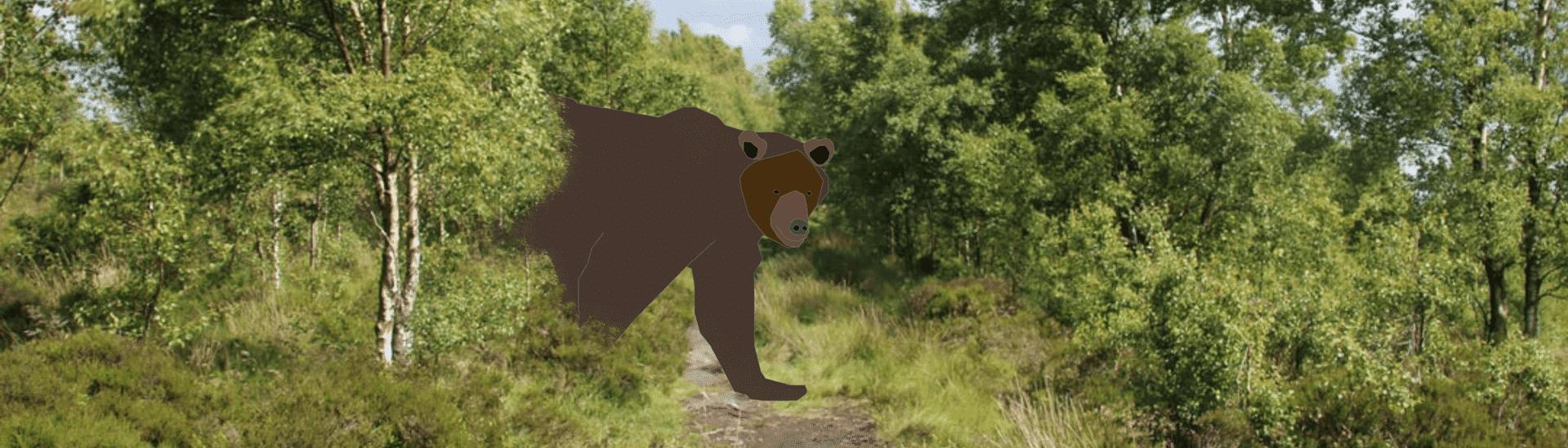 Beren op de weg: volwassenen muziekles en het brein